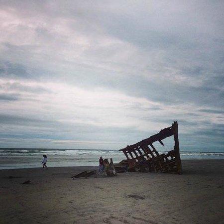 Fort Stevens State Park: Ship Wreck on the beach inside the Ft. Stevens Park