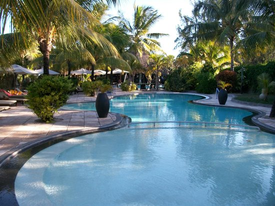 Coin de Mire Attitude : piscine dans jardin