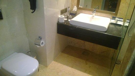 Golden Tulip Lucknow: Toilet