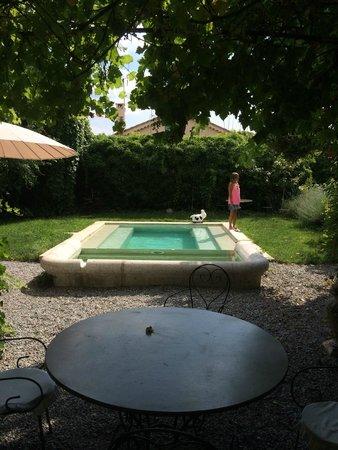 La Forge d'Hauterives : Parque y piscina