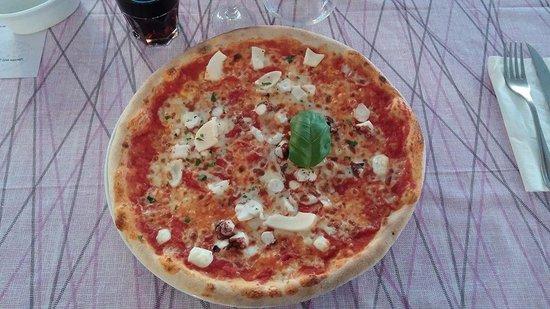 Bar Ristorante Pizzeria Il Nido