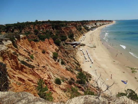 Porto Bay Falesia: Uitzicht vanuit tuin hotel