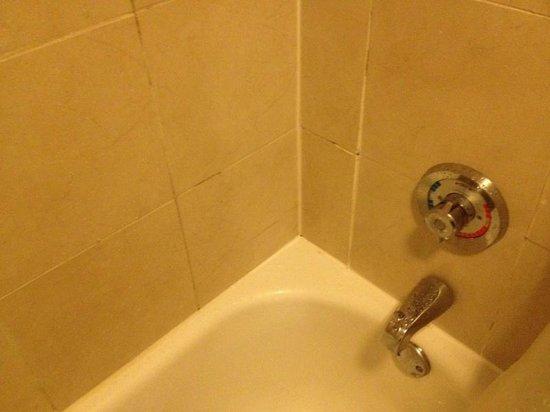 Hyatt Place Austin/Arboretum: Moldy Shower