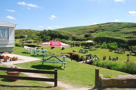 Margaret's Rustic Tea Garden: A view from next to the caravan