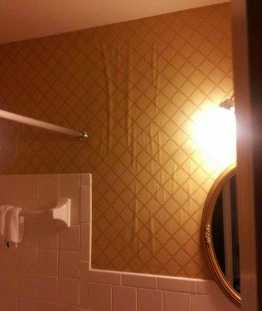 Beaumont Inn: Bubbling wallpaper.