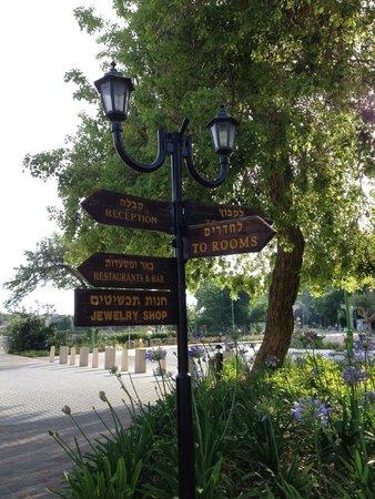 Hagoshrim Hotel & Nature: hotel hagoshrim grounds