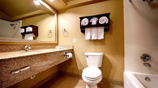 Best Western Plus Arlington North Hotel  U0026 Suites Desde