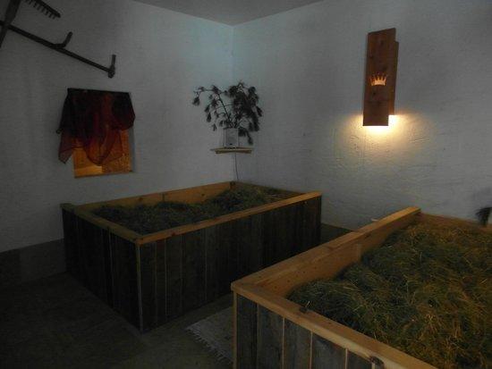 Hotel Bergschlössl: bagno di fieno