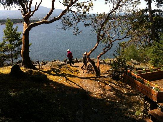 Marina's Hideaway: Exploring the Bluff