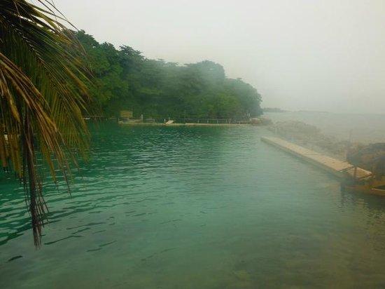 Dolphin Cove: Dolphin Lagoon