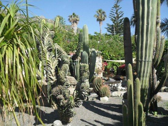 Giardini Ravino: 2