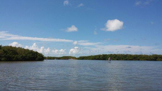 Turtle Beach Resort : Canoeing thru the bay