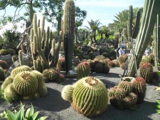 Giardini Ravino: 3