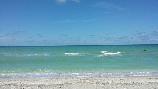 Turtle Beach Resort : Gorgeous water at Turtle Beach!