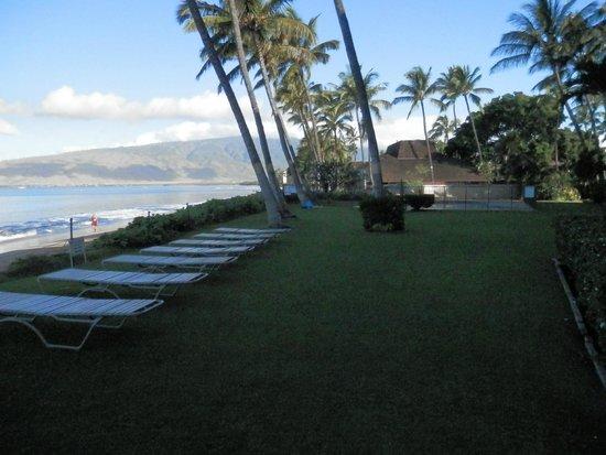 Kihei Beach : Early morning in front