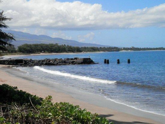 Kihei Beach : View towards south