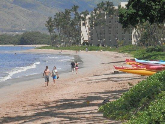 Kihei Beach: Miles of beach to walk - take extra lotion!!