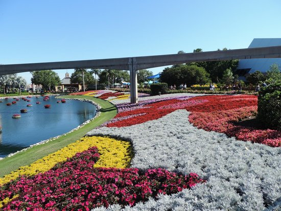 Epcot: Flowers
