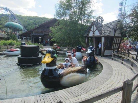 Nigloland : Les canards