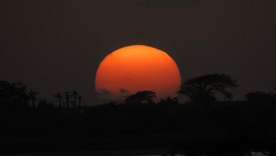 Angola: Parque de los flamingos en Ramiros