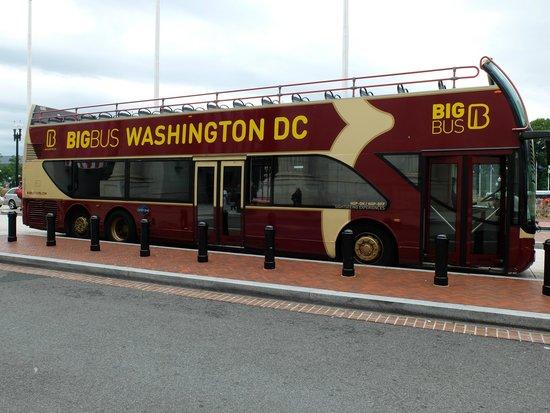 Big Bus Washington DC: Clean bus