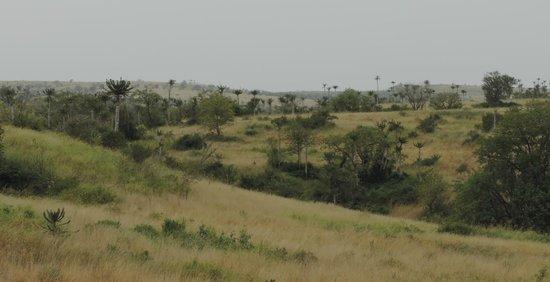 Angola: Vista desde Ludi, Provincia de Bengo