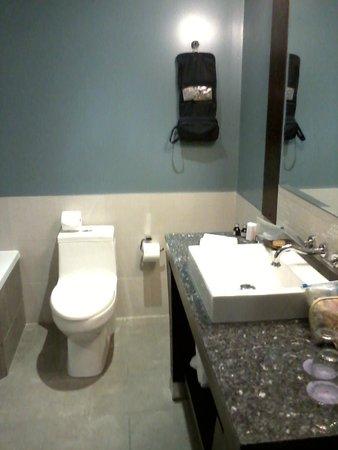 Hotel Nelligan: Sink