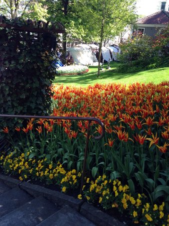 Lisebergs Nojespark: Fairytale garden