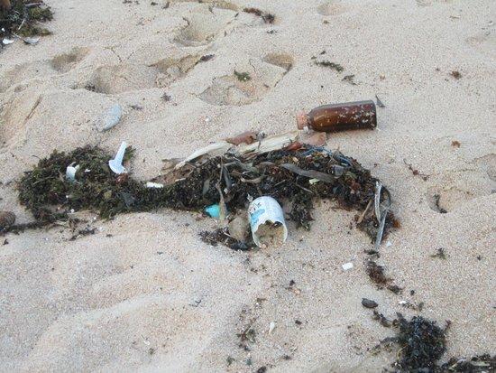 Al's Laemson Resort: Lixo na praia
