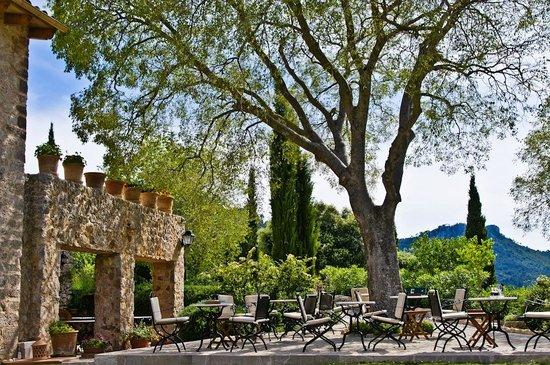 Finca Hotel Son Palou : View 1