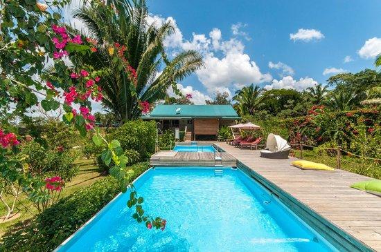 Dream Valley Jungle Lodge : Pool