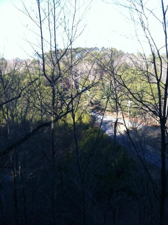 Smoky Mountain Lodging: View  from back deck