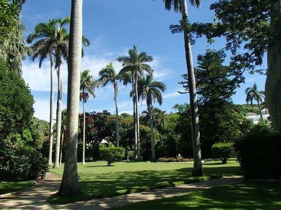 Somers Garden: Park