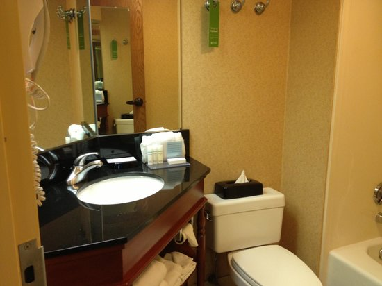 Hampton Inn Pittsburgh/Greentree: Bathroom Sink Room 505