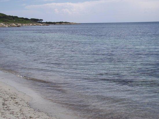 Club Hotel Marina Seada Beach : Mare