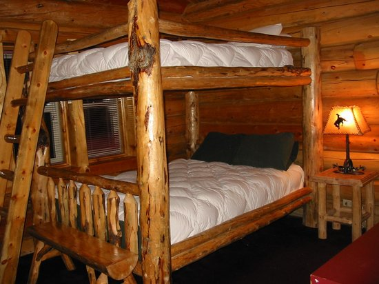 Hibernation Station: Cabin