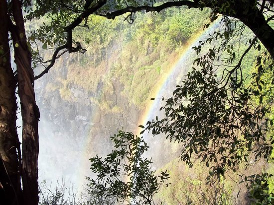 Mosi-oa-Tunya / Victoria Falls National Park : Rainbow in the rainforest on the side of the falls