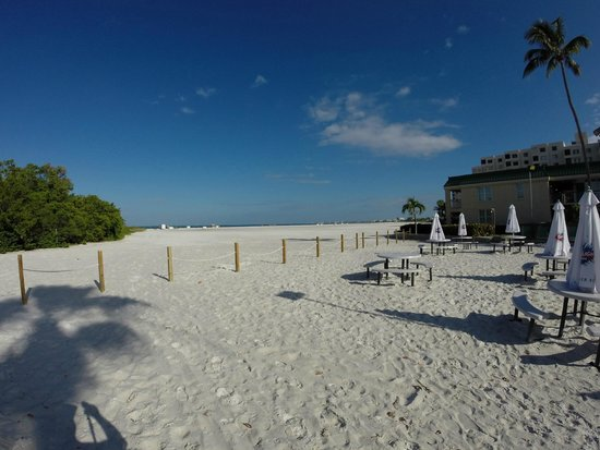 Wyndham Garden Fort Myers Beach : Beach behind hotel. It's a little walk to get to the water!