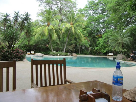 Hotel Capitan Suizo Beach Front Hotel Boutique: the pool from the outside lunch table