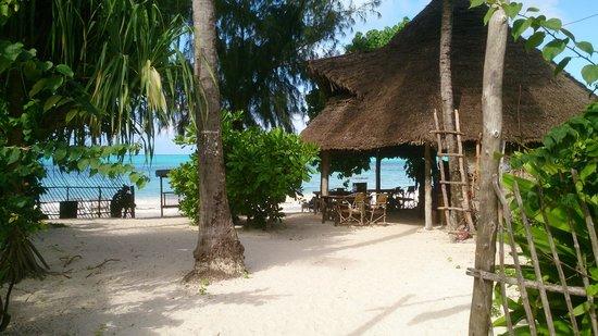 La Papaye Verte : Resto de plage à Jambiani