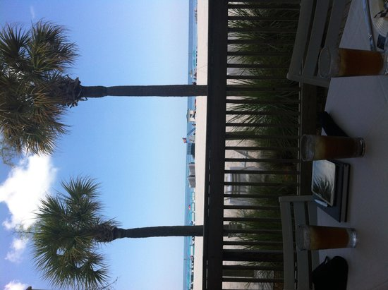 Hilton Clearwater Beach : View from Piper Deck - I can't rotate the pic 's sorry!!