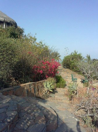 Los Colibris Casitas: view from Mr. Bing's porch (west)