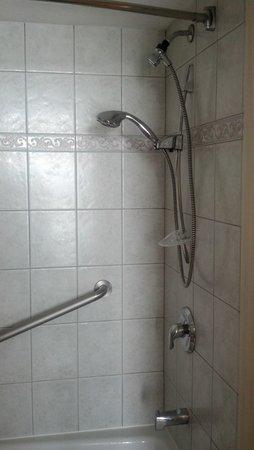 Radisson Suite Hotel Oceanfront: Shower