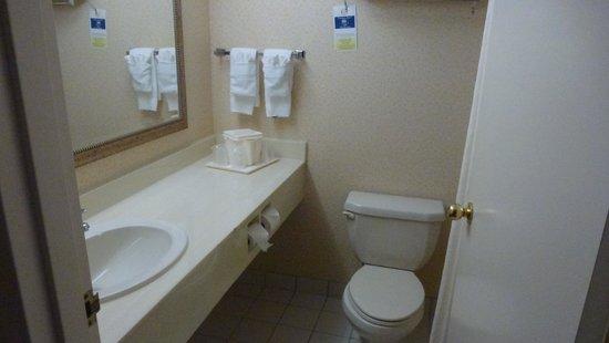 Comfort Inn & Suites: Salle de bain - Chambre 201 (1)