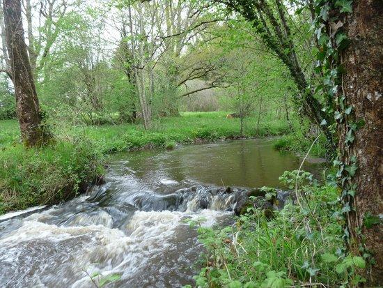 La Couade : la rivière traverse la propriété