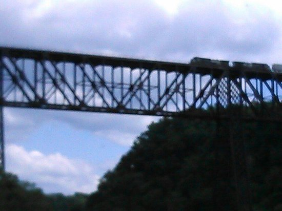 Dixie Belle Riverboat Rides: Train passing overhead
