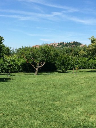 Relais Ortaglia: Looking to Montepulciano