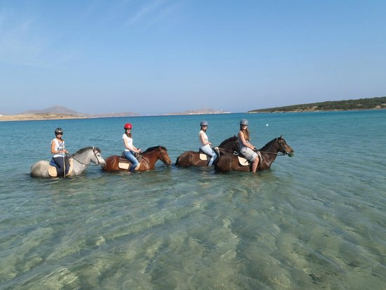 Kokou Horse Riding Center: with the horses in the see