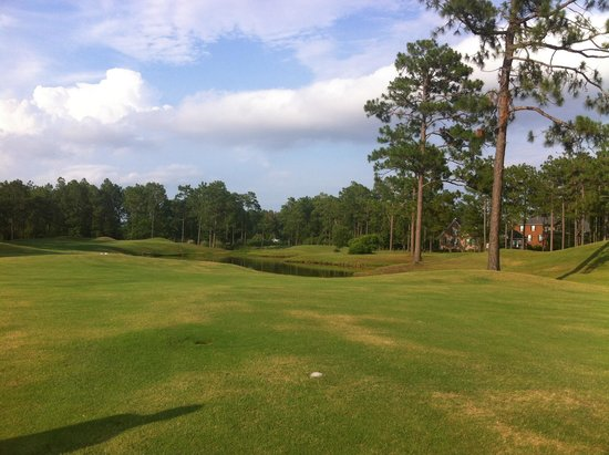 Pine Forest Country Club: Great evening for golf