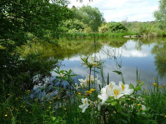 La Couade : l'étang